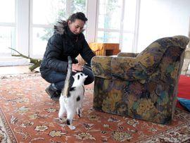 liebevolle Betreuung - Tierpension Bennstedt: Kleinanzeigen aus Bennstedt - Rubrik Tierbetreuung