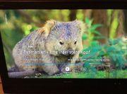 Flachbildfernseher von Sharp 37 Zoll