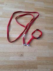 katzen Halsband mit Leine