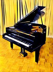 Flügel Klavier Steingräber Söhne Steingraeber