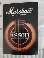 Acoustic Gitarre und Verstärker Zusammen