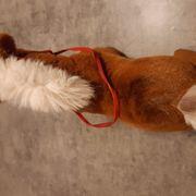Steifftier ein Pferd