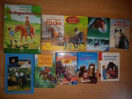 Kinder- und Jugendliteratur - Schöne Pferde Bücher abzugeben