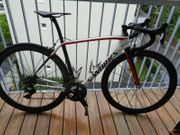 Specialized Sworks Carbon Rennrad gr