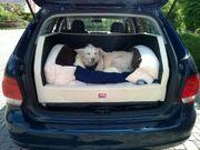 Hundebett Kofferraum Golf u ä