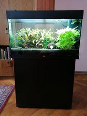 Juwel Rio LED 125L Aquarium