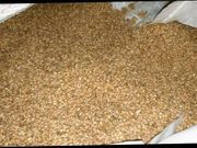 Futter Getreide Gesucht
