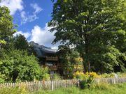 800EUR Belohnung Münchner Familie sucht