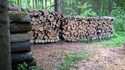 Brennholz ab Wald Hartholz - Buche