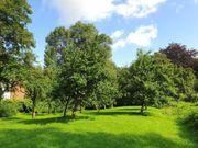 Suche Gartengrundstück in Königsbach-Stein