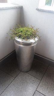 Garten - Deko