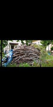 Brennholz Preisgünstig abzugeben