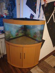 190 liter Juwel Trigon aquarium