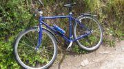 Crossrad Wanderer W-Cabrio H RH53