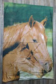 Pferde Bettwäsche Fotodruck Stute mit