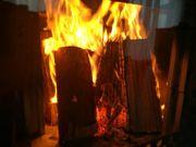 Brennholz aus heimischen Wäldern