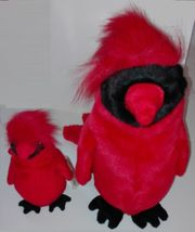 Ty Cardinal Baby und Buddy -