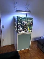 Meerwasser ATI Hybrid Lampe 1x75W