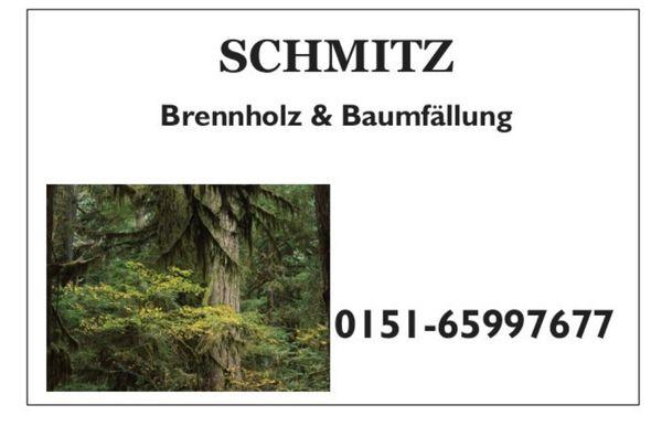 Brennholz und Baumfällung