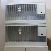 Sittich Zuchtbox Käfig mit Nistkasten