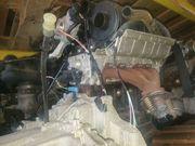 Motor Renault 1 2 Motorkennung