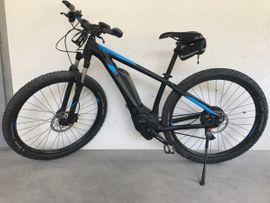 Singlespeed Bike Test auf carolinavolksfolks.com | Test & Vergleich 2020