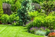 Familie sucht Gartengrundstück zum Mieten
