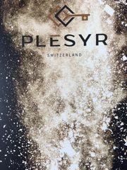 PLESYR - Eine Begegnung die man