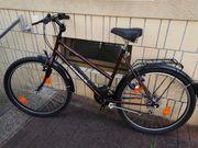Damen oder Herren Fahrrad 26