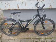 Fahrrad Marke Pegasus Avanti