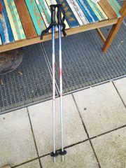 Stistöcke 110cm
