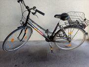 Fahrrad Mc Kenzie