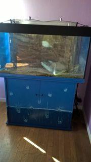 aquarium mit mobel