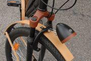 Herren e-bike