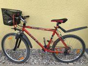 fahrrad trek