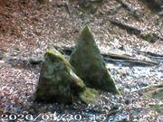 Forschergruppe Archäologie Geologie Natur Fotografieren
