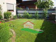 Rasen Rollrasen Garten Garten Gestalltung