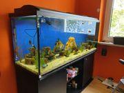 Aquarium 150x60x50 cm 450 Liter