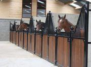 2 Pferdebox Oxford Luxus Pferdestall