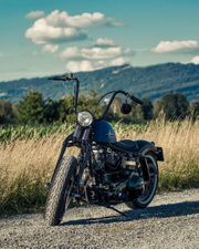 Harley Davidson Shovelhead Springer