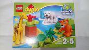Lego Duplo 10801 Jungtiere