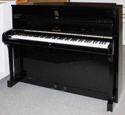 Klavier Haegele 116 schwarz poliert