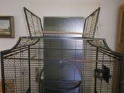 Vogelvoliere Montana Madeira Cage mit