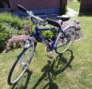 Herren Trekking Fahrrad absolut Neuwertig