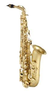 Altsaxophon Borgani 200 PG - Neu