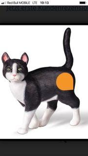 Top Toi Katze