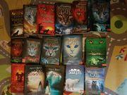 Bücher Jugend Fantasy Warrior Cats