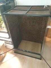 Hochterrarium Glasterrarium Terrarium