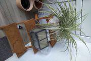 Pflanzentreppe zu verkaufen