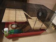 Hamster mit Käfig